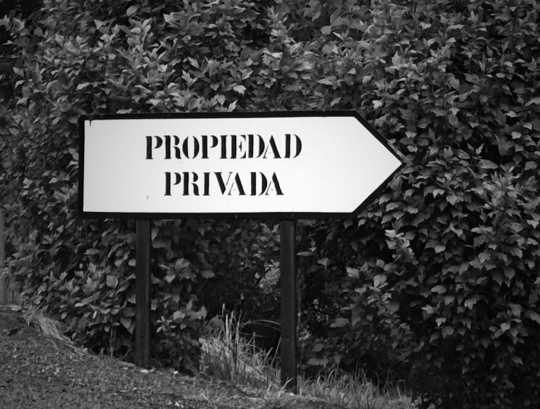 fotor_(794)