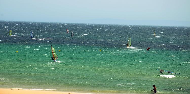 surfeando2